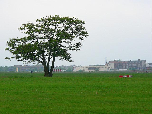 Tempelhofer Park - Freifläche