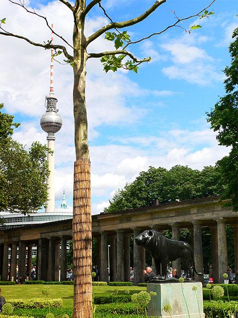 Museumspark und Fernsehturm