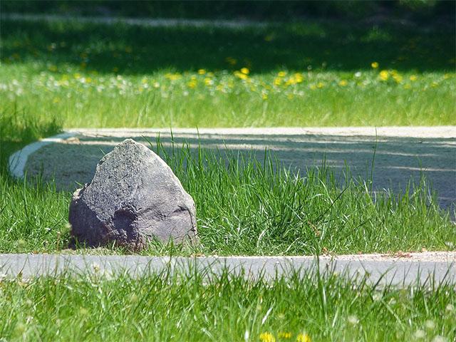 Wegstein auf Blumenwiese - Bernau