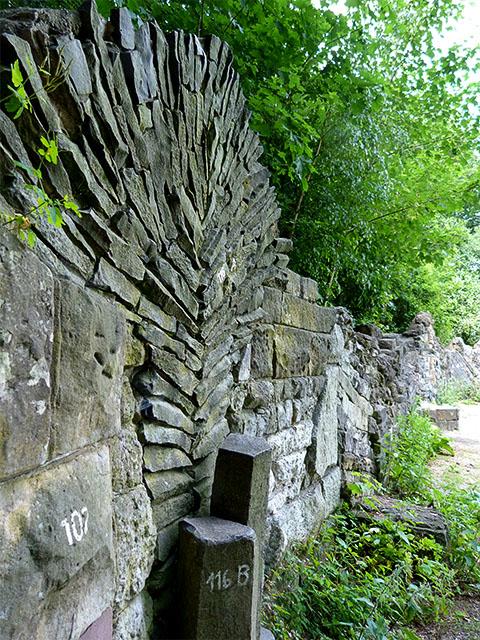 Geologische Wand - Botanischer Volkspark Pankow