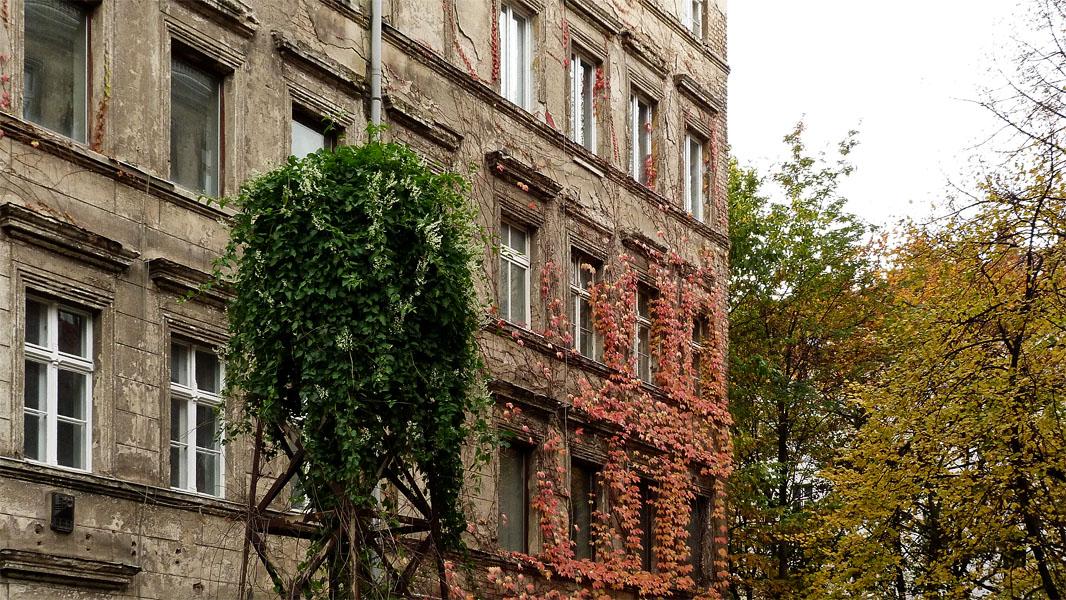 Kastanienallee Hinterhof im Herbst