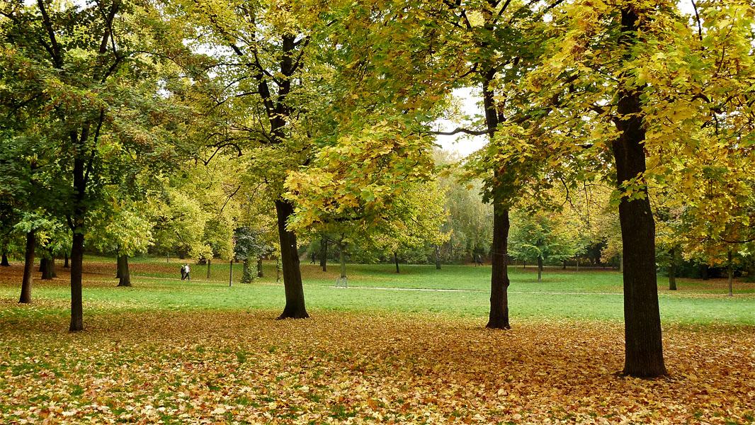 Volkspark Friedrichshain im Herbst
