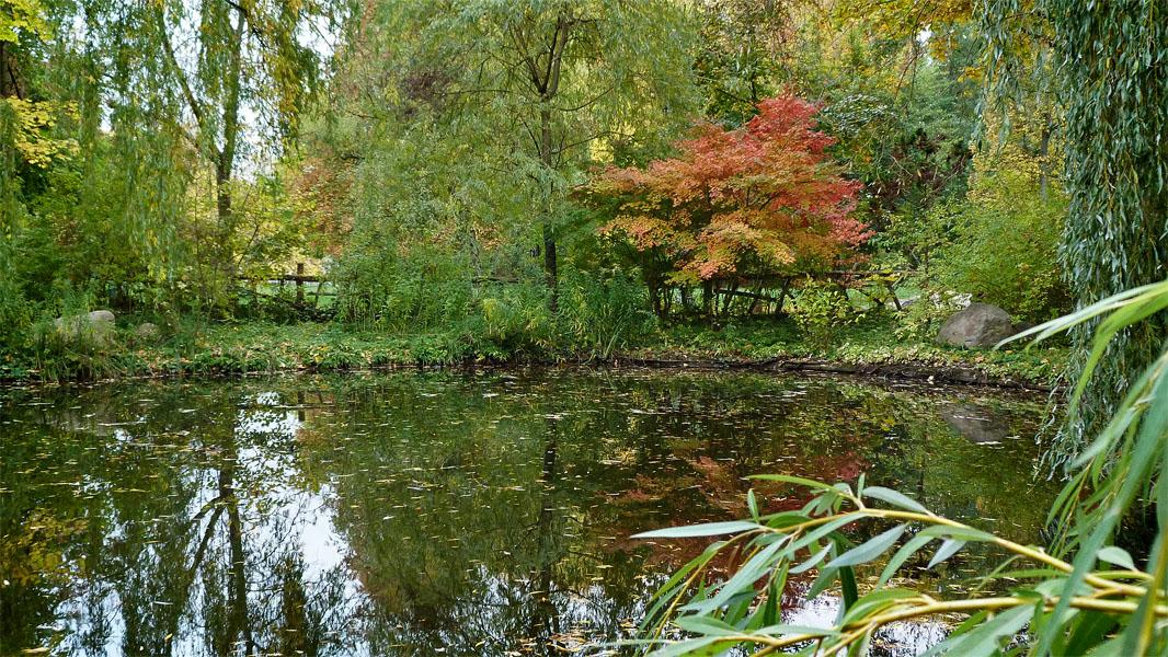 Kleiner Teich im Volkspark Friedrichshain