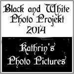 Schwarz Weiss Photo Projekt 2013 / Black and White Photo Projekt 2014 - Logo