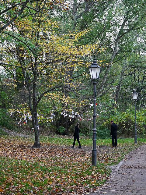 Volkspark Friedrichshain - Wunschbaum
