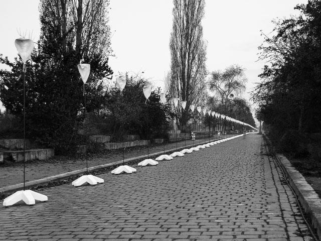 Lichtgrenze im Mauerpark - schwarz/weiß