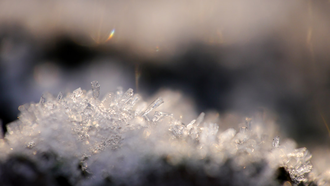 Frost-Makro