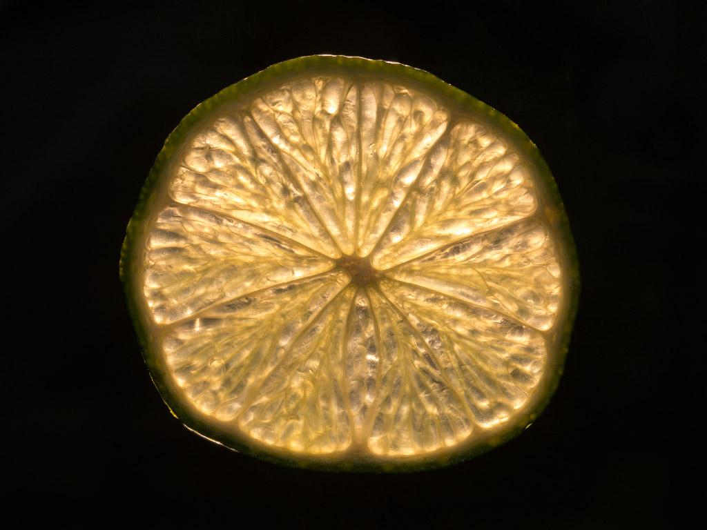 Limettenscheibe durchleuchtet