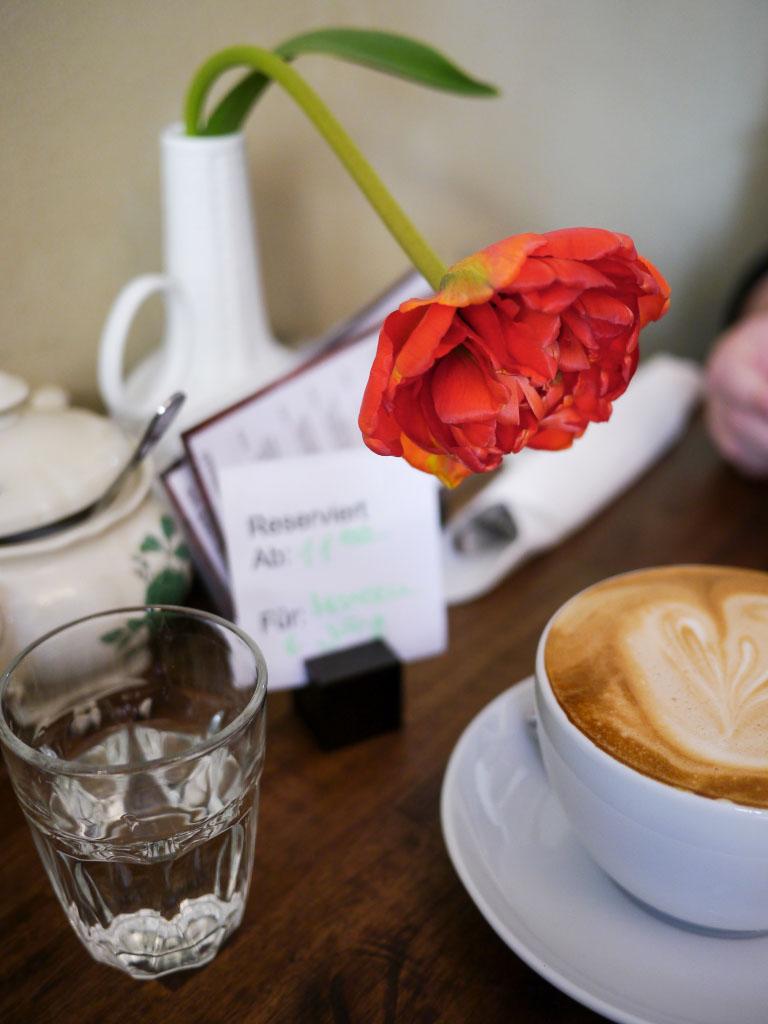 Milchkaffee mit Blume - Wo der Bär den Honig holt