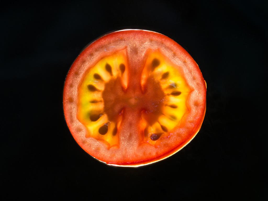 Tomatenscheibe durchleuchtet