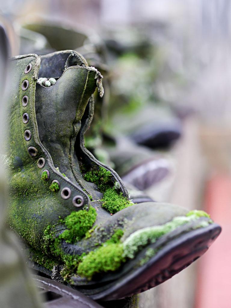Bemooster Schuh