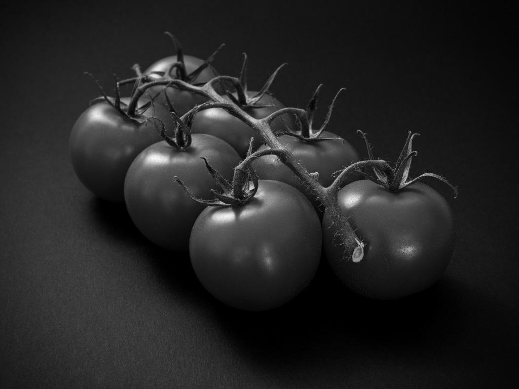 Tomaten - Schwarzweiß