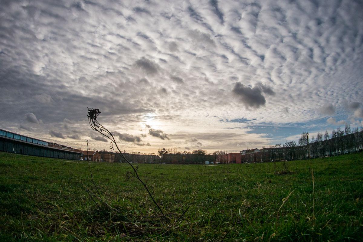 Blankensteinpark - Fisheye