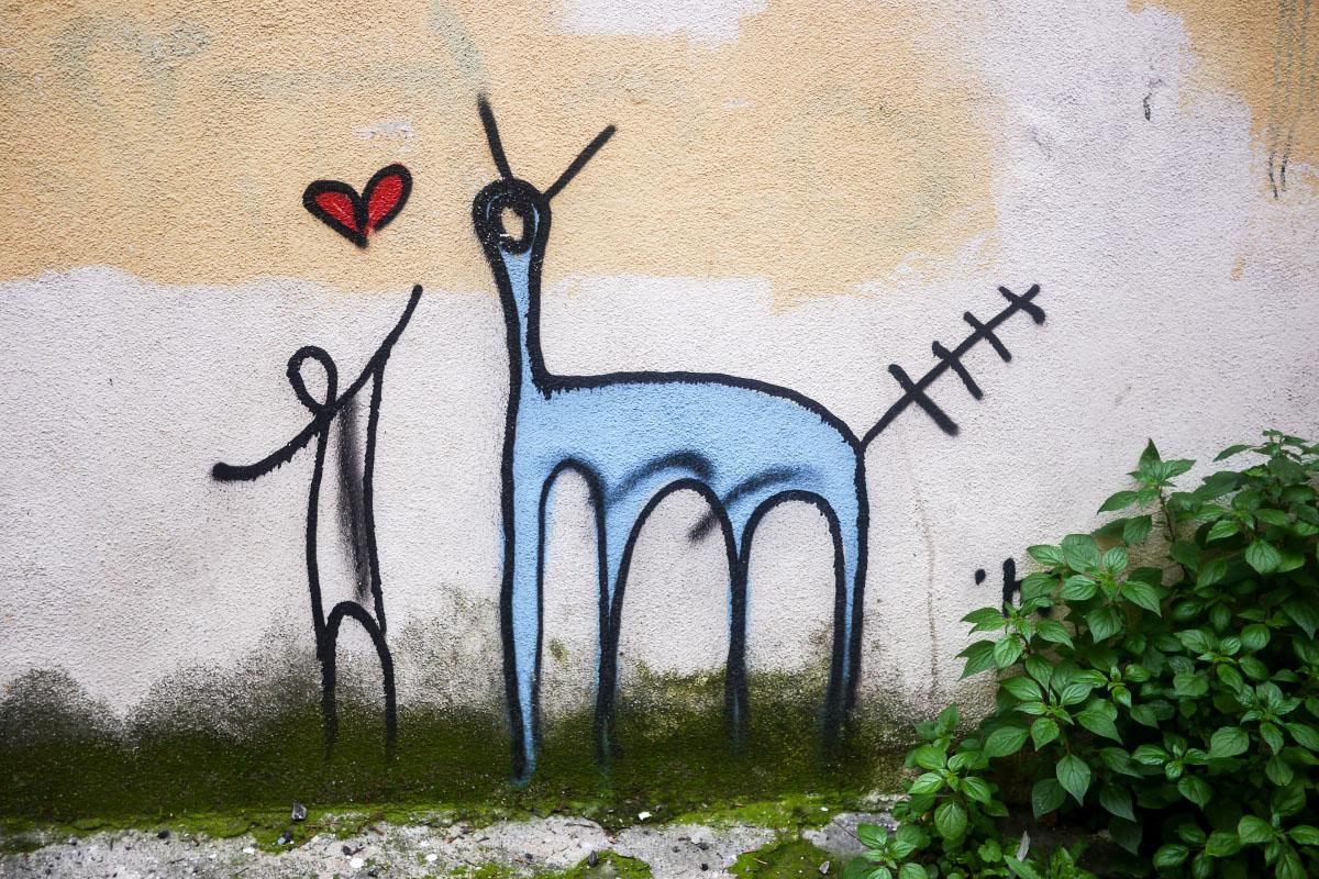 Pisa - Graffiti
